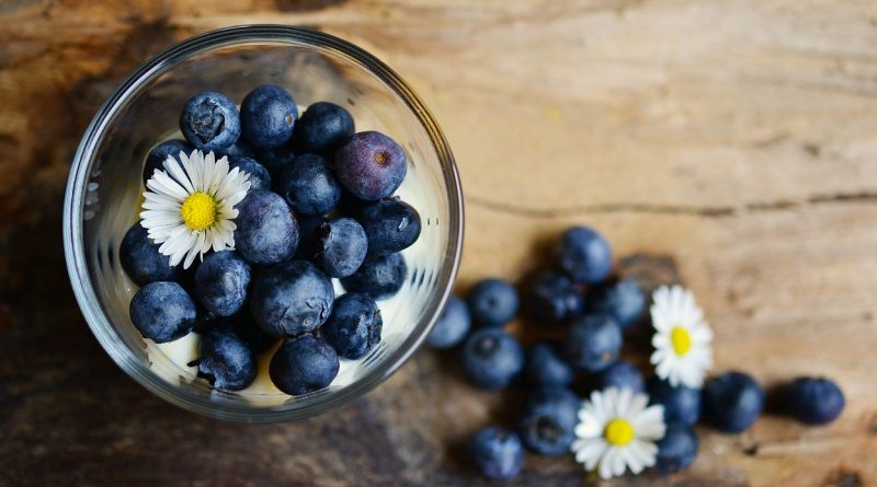 Lekovitost borovnice – dobar vid, zdravo srce, niži šećer…